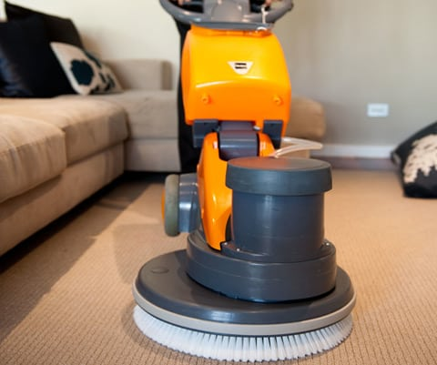 Carpet Cleaning Adelaide3